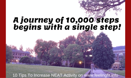 Ten Tips to Increase Activity throughout the day from www.feelingfit.info