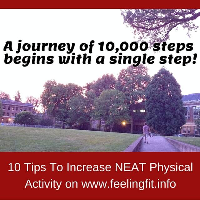 Ten Steps To Increase NEAT Activity