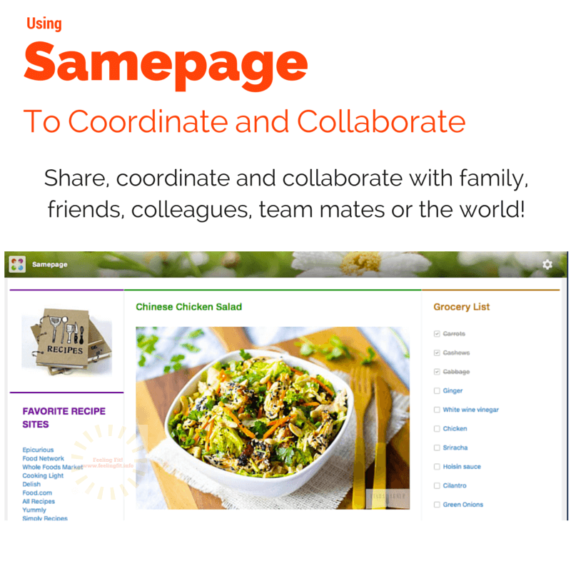 Samepage is a fun, easy to use planning application for groups and individuals.