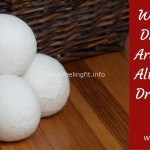 Can Smart Wool Dryer Balls Baby Your Skin & Save Energy?